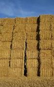 where to purchase Baler Twine